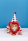 CAT 03 RK1851 31