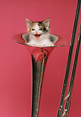 CAT 03 RK1982 05
