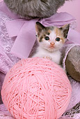 CAT 03 RK2207 05