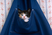 CAT 03 RK2273 03
