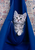 CAT 03 RK2275 12