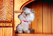 CAT 03 RK2570 07