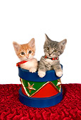 CAT 03 RK2642 01