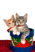 CAT 03 RK2646 01