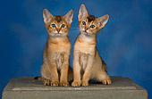 CAT 03 RK2673 01