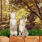 CAT 03 RS0118 01