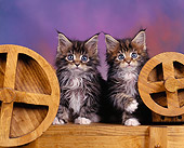 CAT 04 RK0016 07