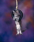 CAT 04 RK0052 07