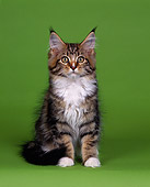 CAT 04 RK0063 02