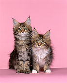 CAT 04 RK0068 08
