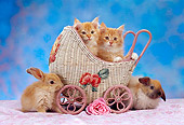 CAT 06 RC0002 01
