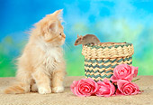 CAT 09 RC0001 01