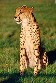 CHE 02 RK0105 06