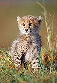 CHE 02 KH0003 01