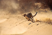 CHE 04 SM0030 01