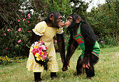 CHI 02 RK0089 02