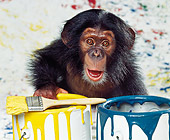 CHI 03 RK0067 11