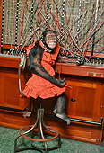 CHI 03 RK0130 23
