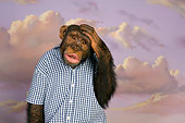 CHI 03 RK0194 01