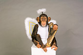 CHI 03 RK0205 01