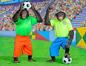 CHI 03 RK1103 01