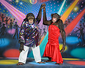 CHI 03 RK1107 01