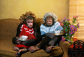 CHI 03 RC0001 01