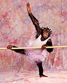 CHI 03 RK0024 01