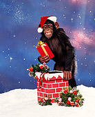 CHI 03 RK0032 02