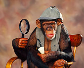CHI 03 RK0060 10