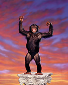 CHI 03 RK0125 02