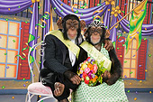 CHI 03 RK0260 01