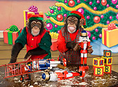 CHI 03 RK0264 01