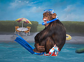 CHI 03 RK0266 01