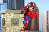 CHI 03 RK0271 01