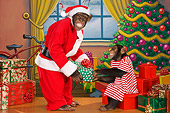 CHI 03 RK0275 01