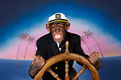 CHI 03 RK0278 02