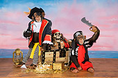 CHI 03 RK0289 01