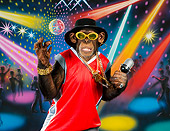 CHI 03 RK0294 01
