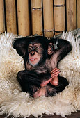 CHI 05 RK0023 04
