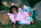 CHI 05 RK0030 15