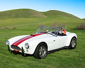 COB 01 RK0148 01