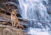 COU 01 NE0002 01