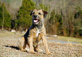 DOG 02 JN0018 01