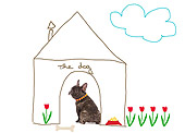 DOG 05 JE0006 01