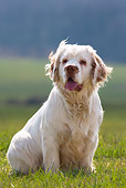 DOG 09 KH0002 01