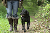 DOG 18 NR0117 01