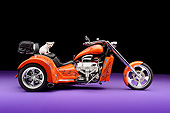 DOG 19 RK0146 01