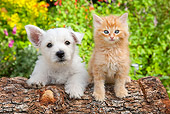 DOK 01 BK0002 01