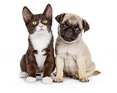 DOK 01 BK0048 01
